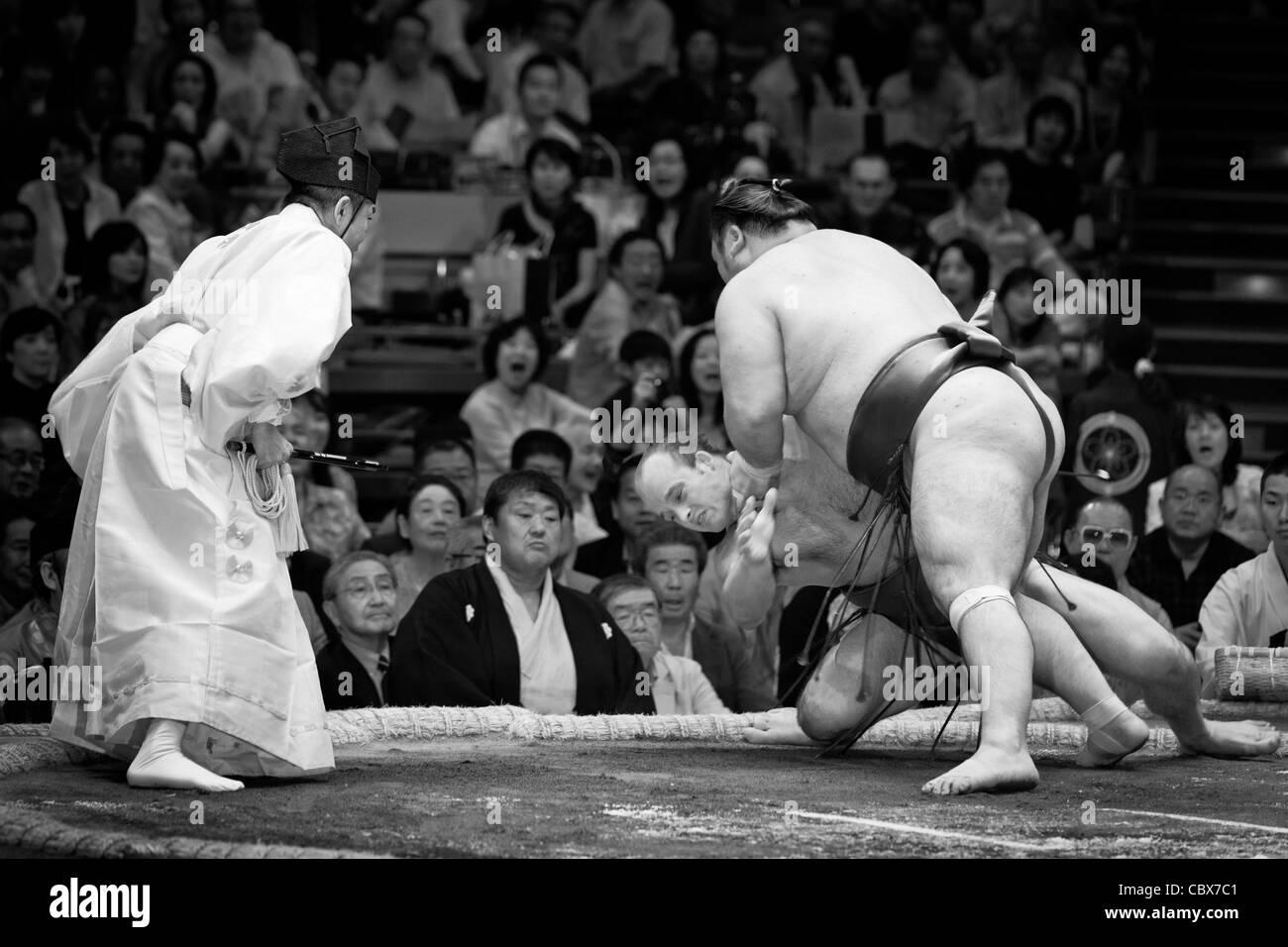 Ceca lottatore di sumo takanoyama essendo buttato a terra - ryogoku kokugikan, Tokyo, Giappone Immagini Stock