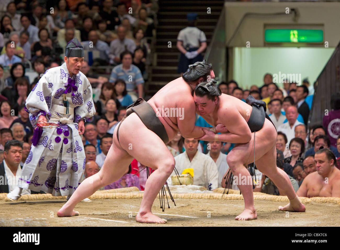 Lottatori di Sumo in un bout - ryogoku kokugikan, Tokyo, Giappone Immagini Stock