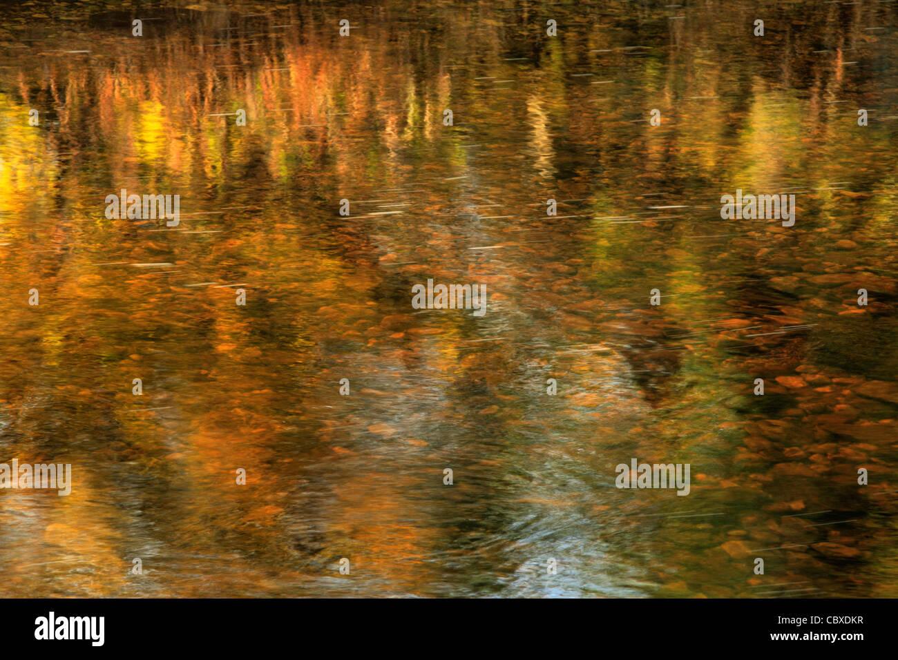 Abstract del bellissimo colore di autunno si riflette nel fiume Skirfare in Arncliffe, Littondale, nello Yorkshire, Immagini Stock