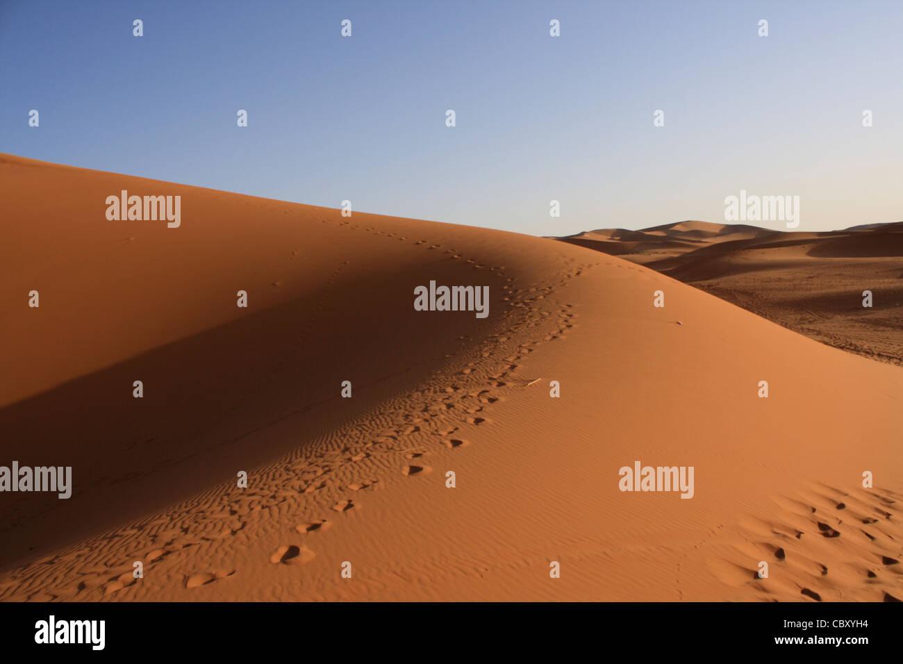 Erg Chebbi, Sahara, Marocco Foto Stock