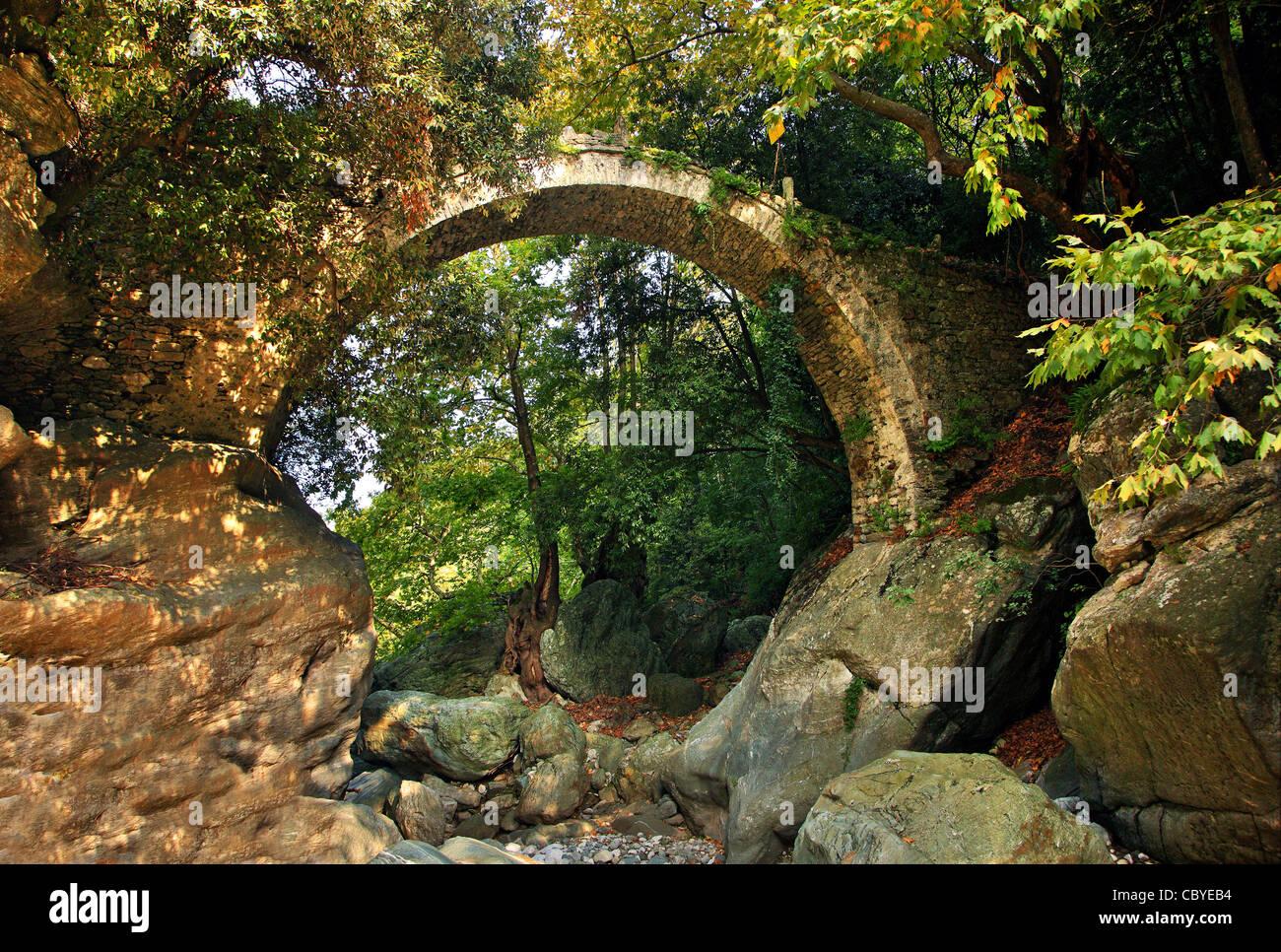 Il vecchio Diakoumis, pietra, ponte arcuato nel nord Pelion montagna, Magnissias, Tessaglia, Grecia. Immagini Stock