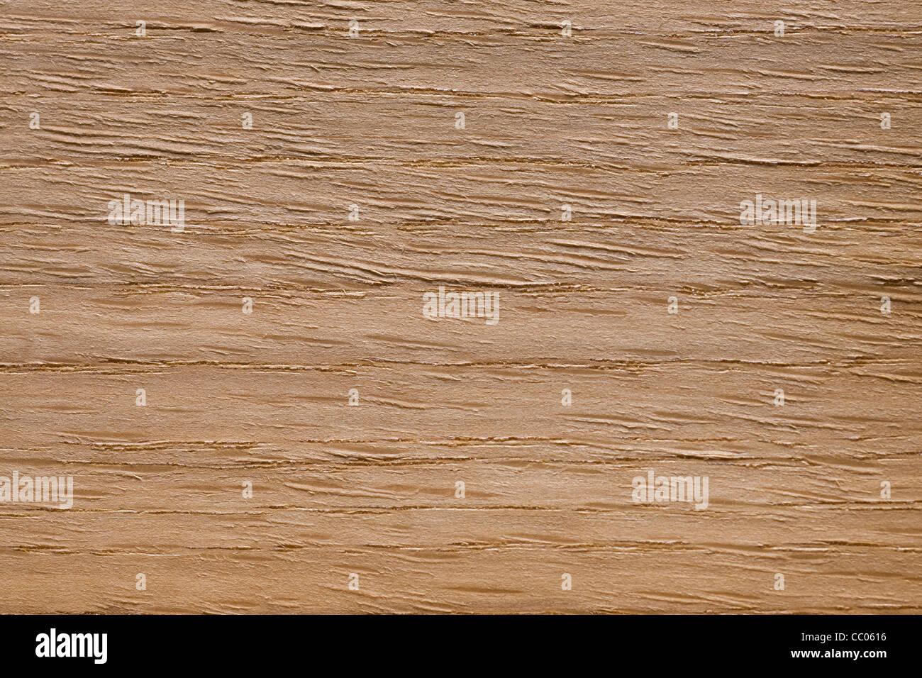 Legno di grano Americano bianco di quercia (Quercus alba), America del Nord Immagini Stock