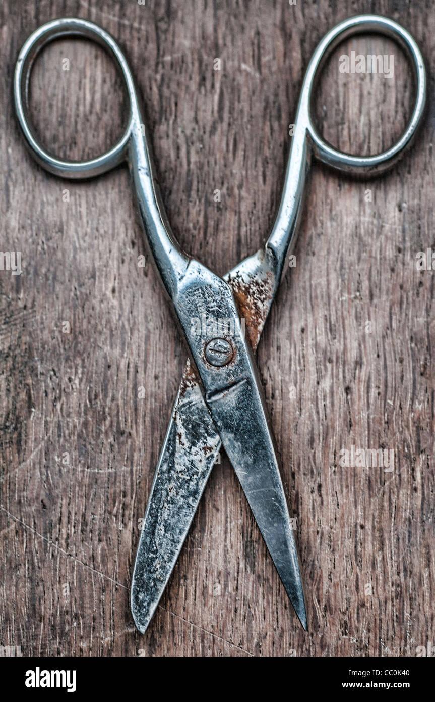 Vecchie forbici Immagini Stock