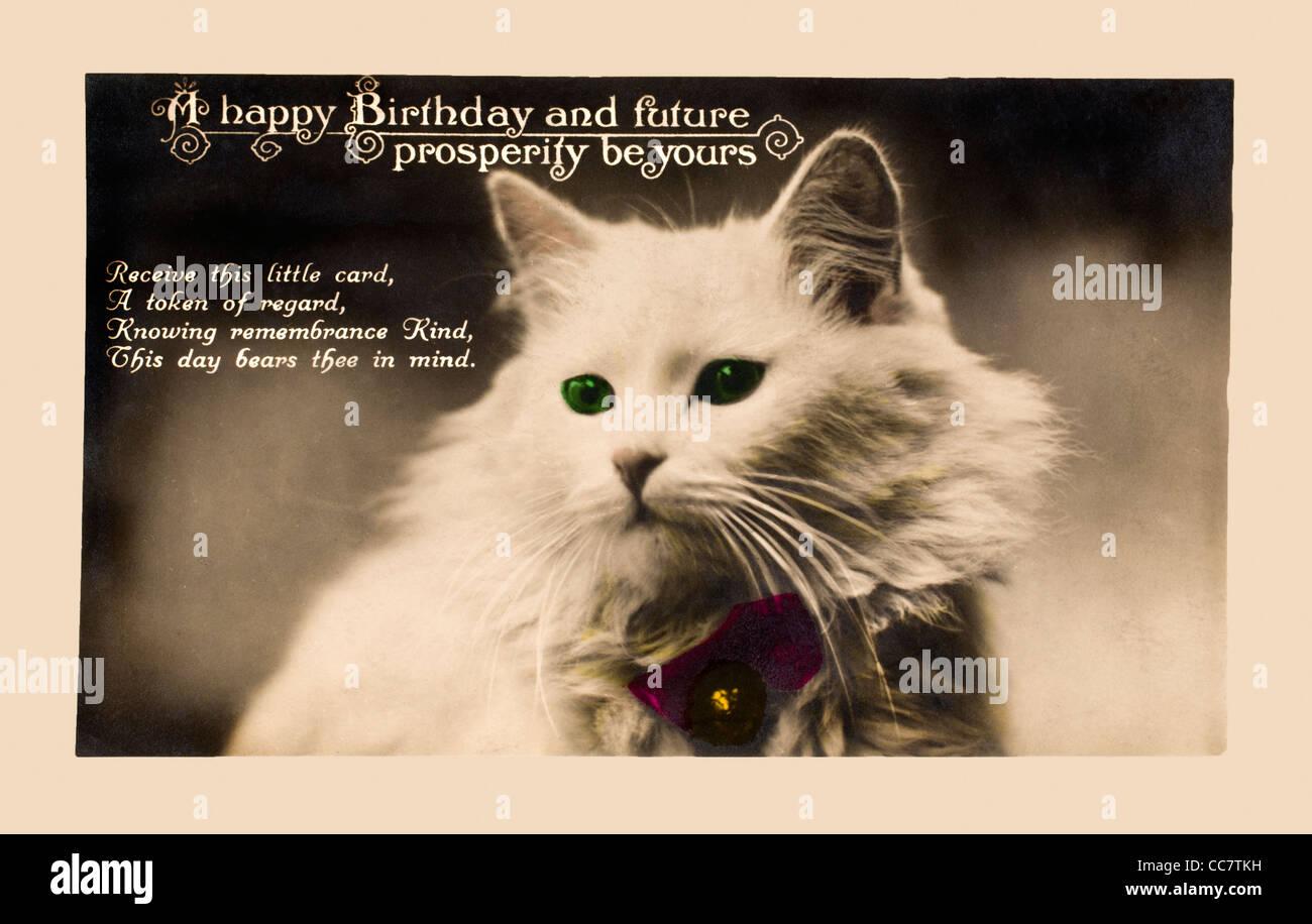 1920 S Biglietto Di Auguri Di Compleanno In Forma Di Una Cartolina