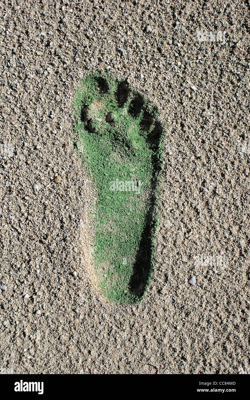 Il verde delle emissioni di anidride carbonica in Coral Beach sabbia Immagini Stock