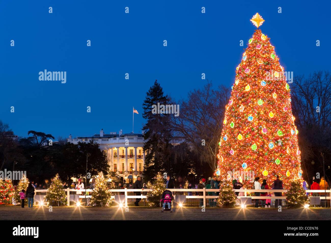 Albero Di Natale Washington.La Nazionale Di Albero Di Natale Davanti Alla Casa Bianca Di Washington Dc Con I Visitatori E Il Corteo Della Pace Foto Stock Alamy