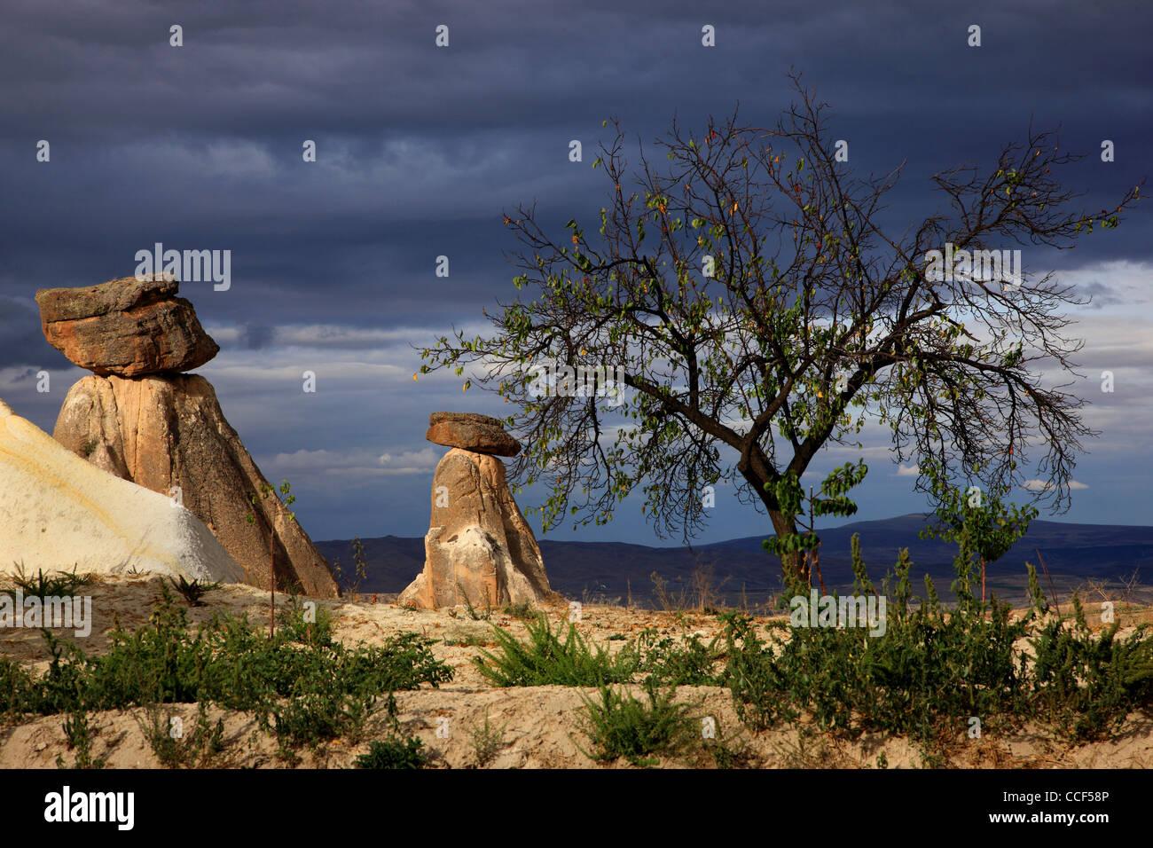 Tipico paesaggio della Cappadocia, vicino a Urgup, sulla strada di Goreme. Nevsehir, Anatolia, Turchia Foto Stock
