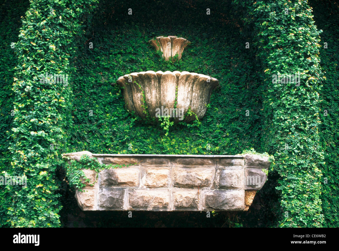 Pietra Verde Rivestimento : Nmk 86045 : verde liane rivestimento parete in pietra fontana al
