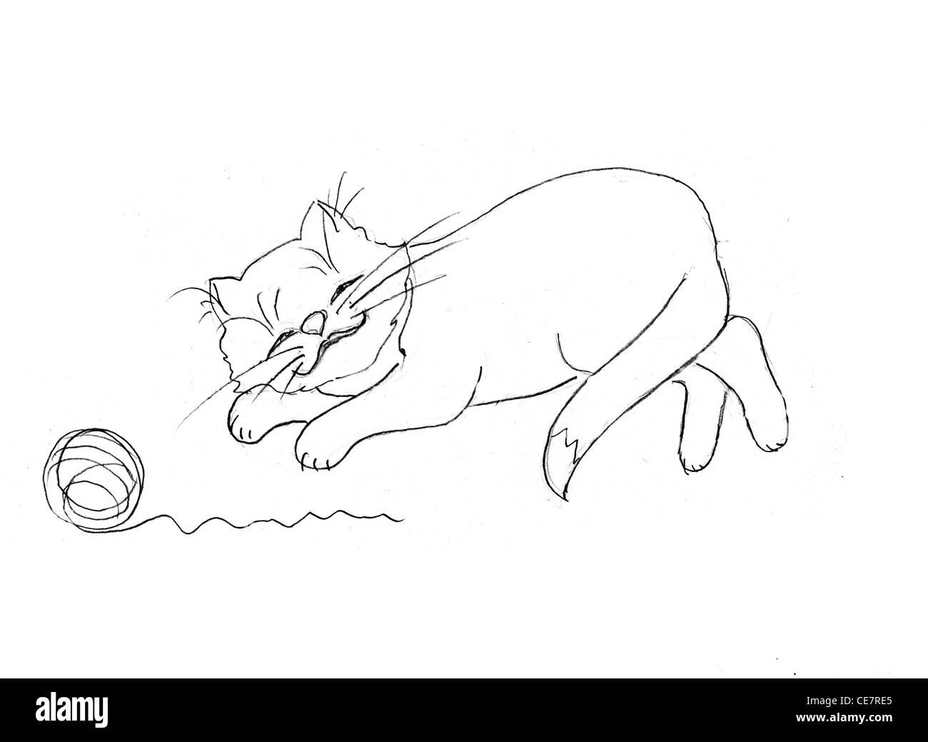 Disegno Del Gatto Su Sfondo Bianco Foto Immagine Stock 43198013