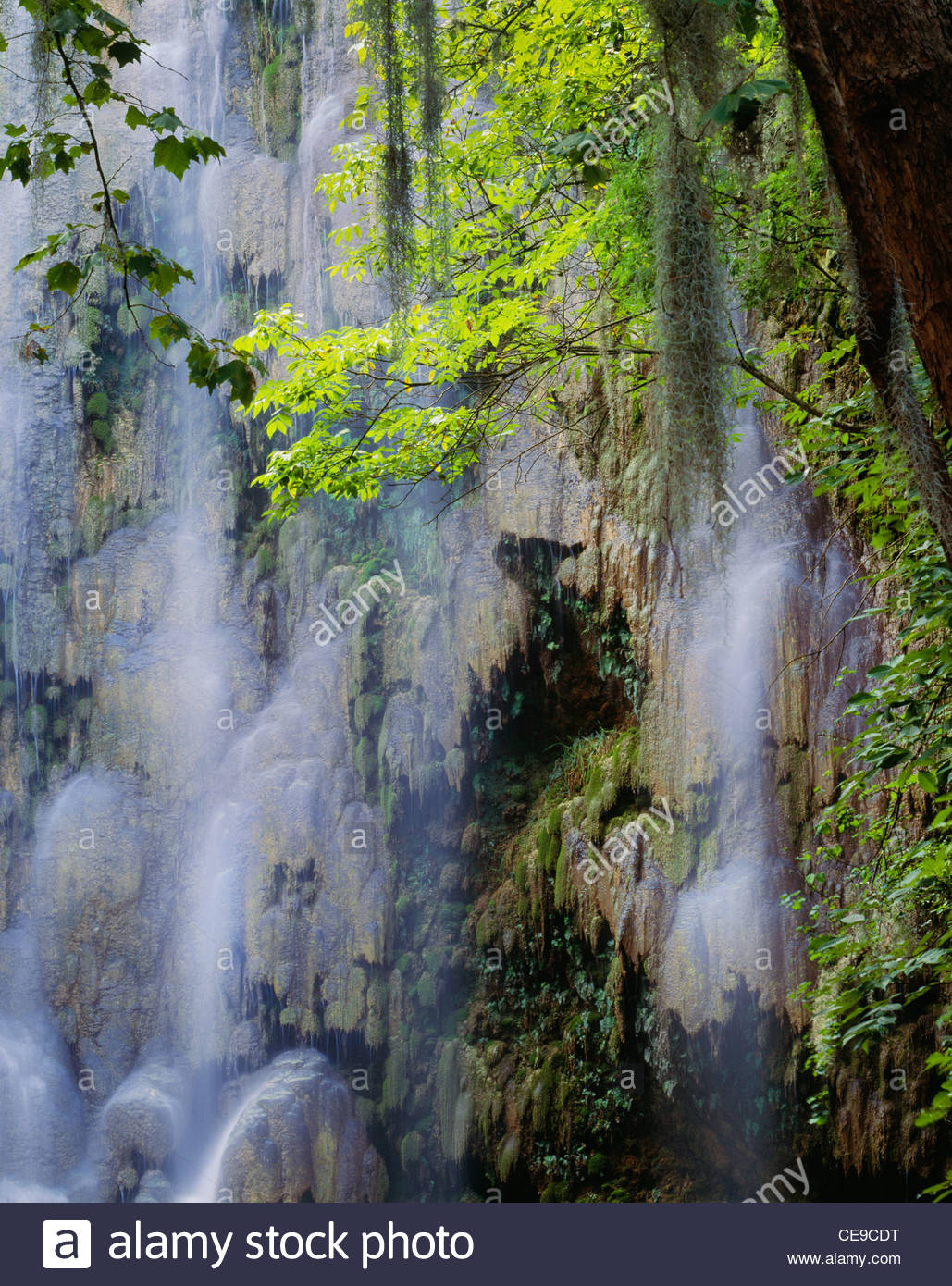 "Waterfall [Sierra Madre Occidental] 'Nuevo Leon "" Messico. Immagini Stock"
