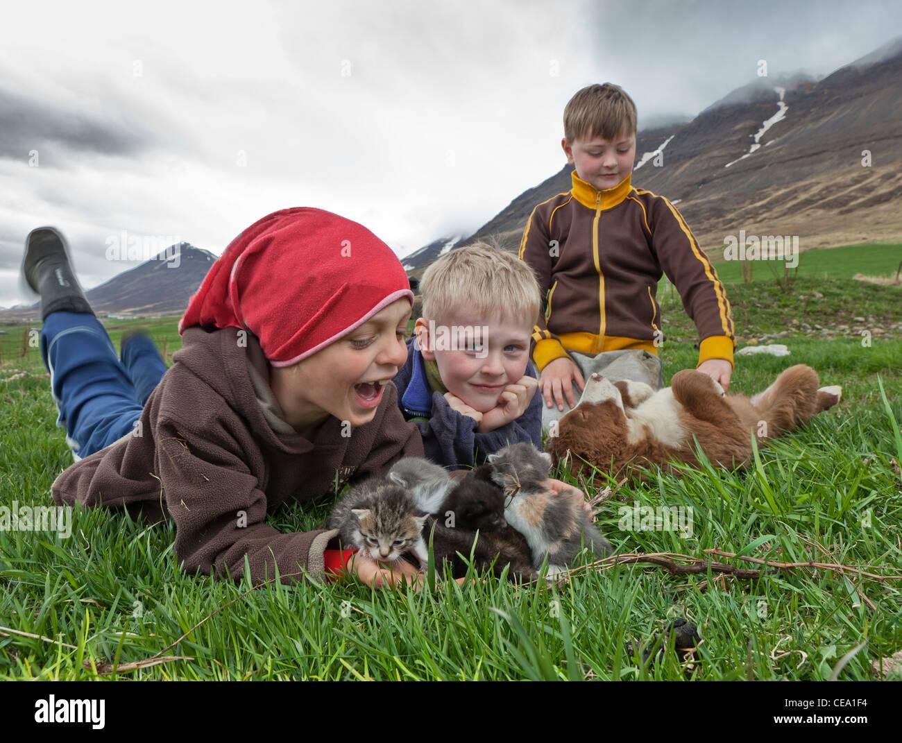 Ragazzi con i cuccioli e cucciolo sulla fattoria nel nord dell'Islanda Immagini Stock
