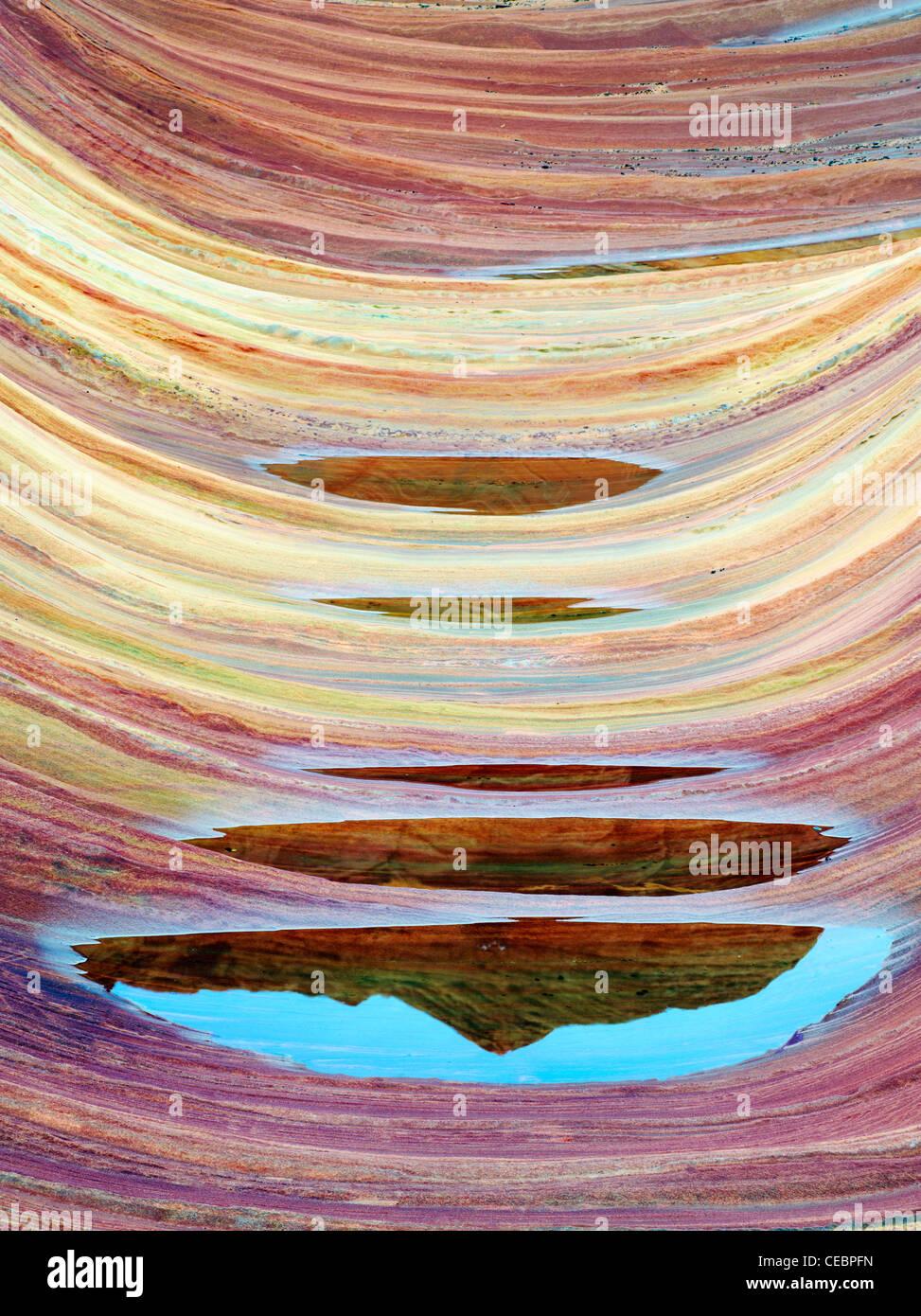 Formazione Sandtone e la piscina di acqua nel nord Coyote Buttes, l'onda. Paria Canyon Vermillion Cliffs Wilderness. Immagini Stock
