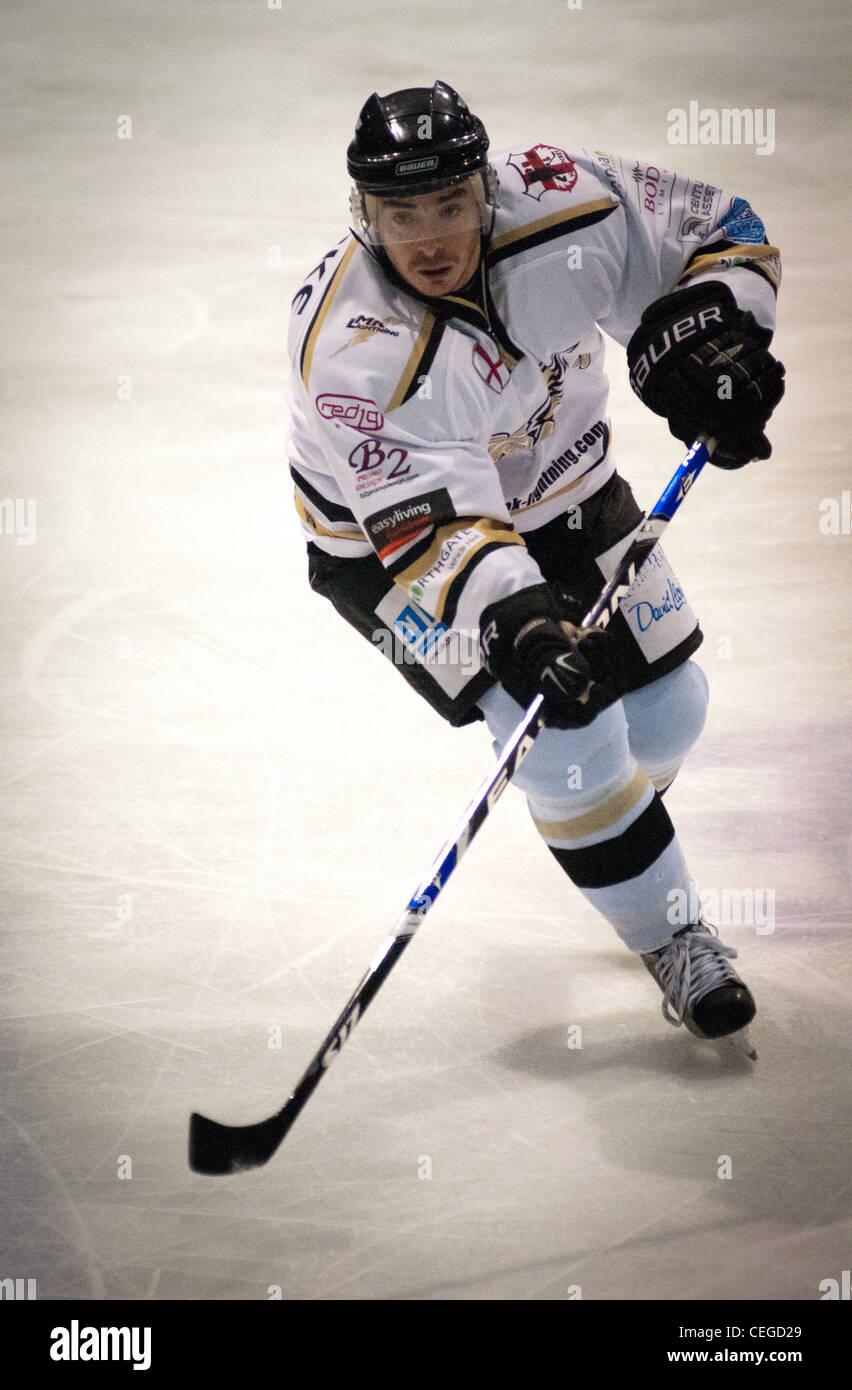 Hockey su ghiaccio player Immagini Stock