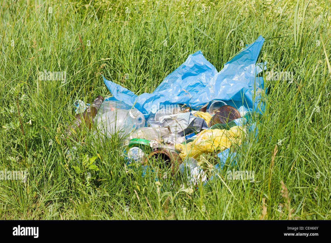 Diffusione illegale di rifiuti in plastica blu dump di borsa Immagini Stock
