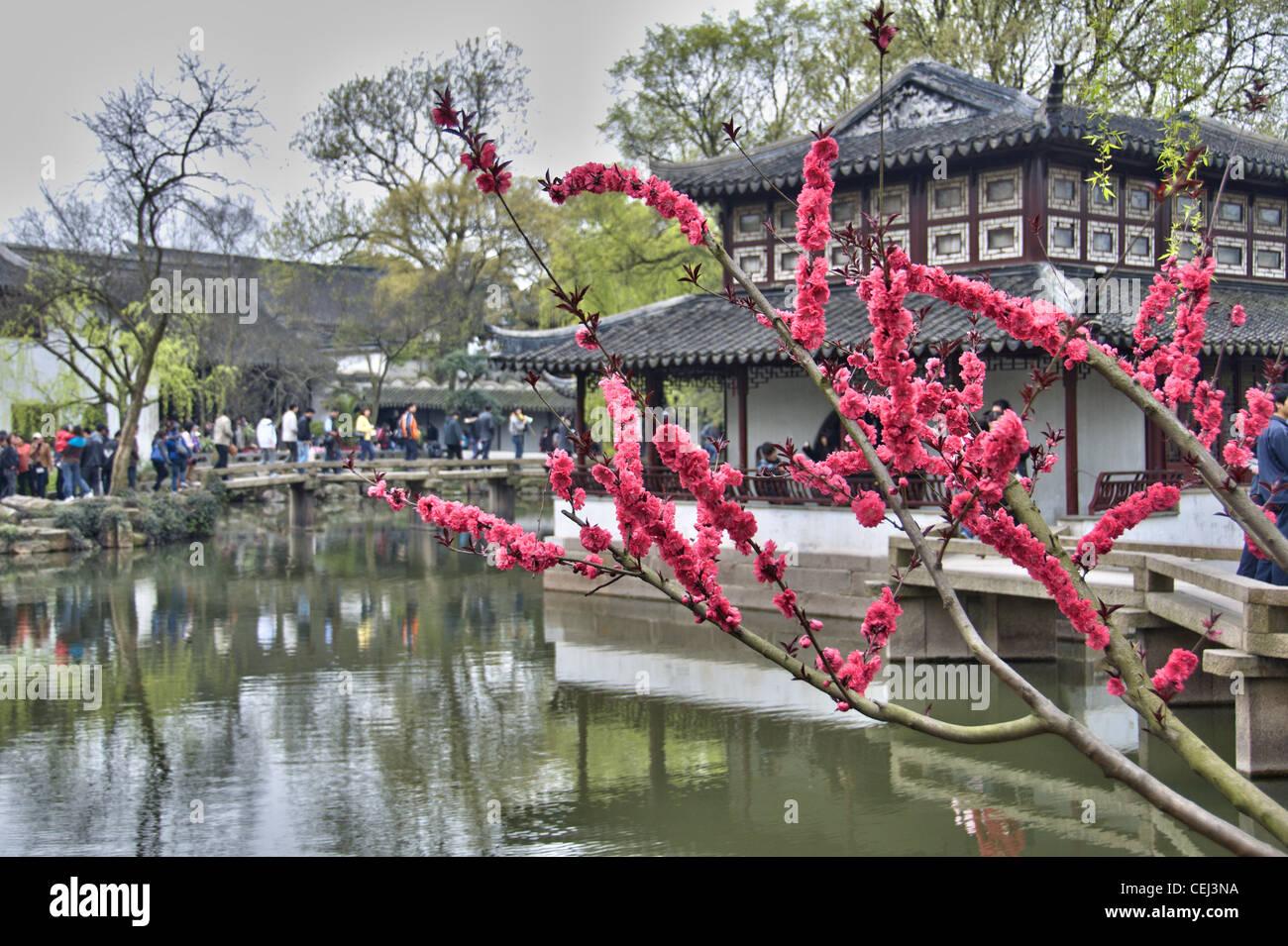 Stagno e pagoda all'Humble Administrator's garden - Suzhou (Cina) Immagini Stock