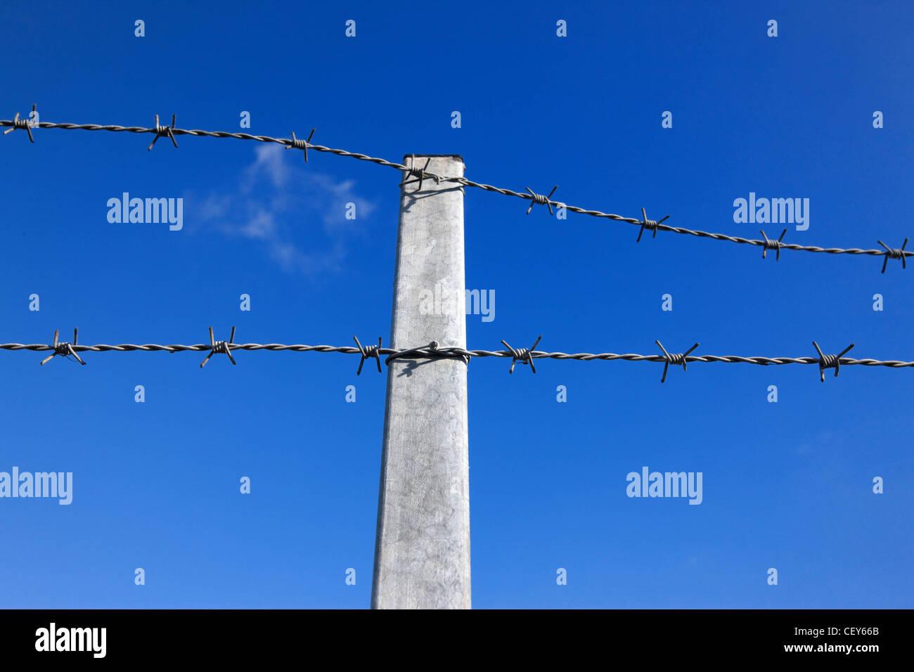 La recinzione di sicurezza Immagini Stock
