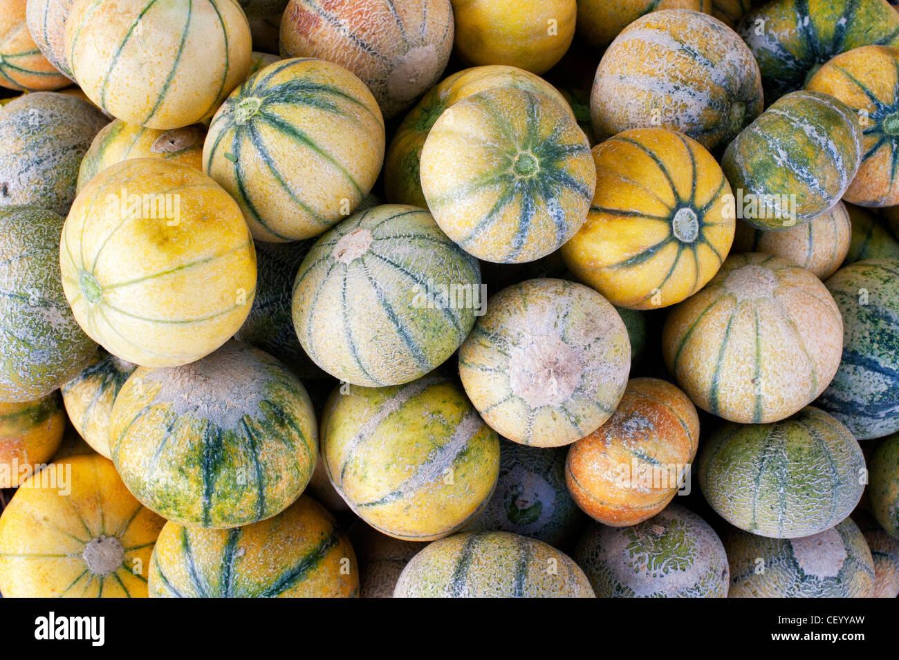 Meloni freschi per la vendita in un mercato indiano. Andhra Pradesh, India Immagini Stock