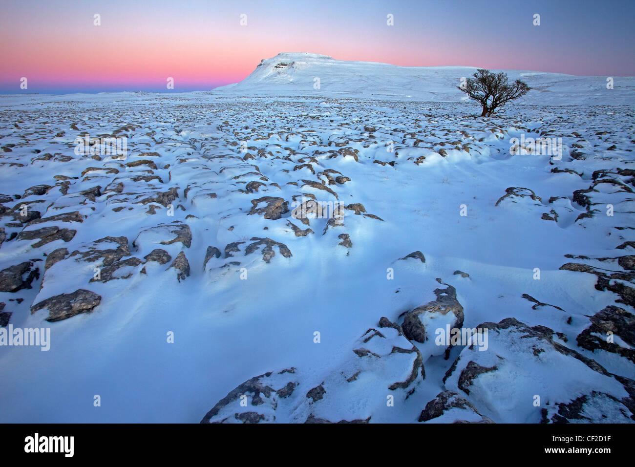 Vista invernale al tramonto verso Ingleborough, uno del Yorkshire tre cime da bianco cicatrici, un ampio altopiano Immagini Stock