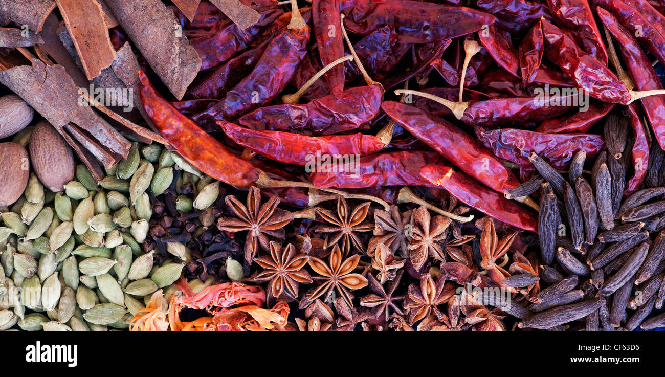 Cucina indiana spezie pattern. Piatto fotografia laici dal di sopra. Vista panoramica Foto Stock