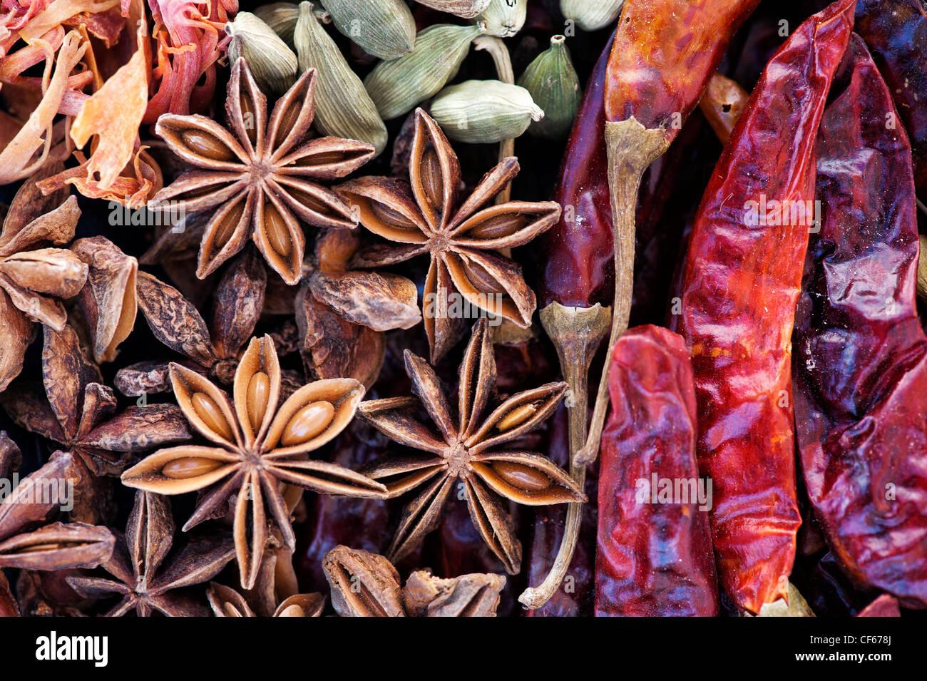 Cucina indiana spezie pattern. Piatto fotografia laici da sopra Immagini Stock