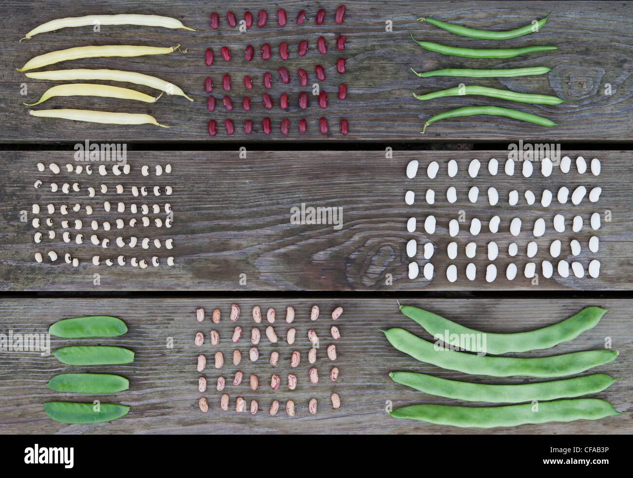 Ordinatamente disposte legumi sul tavolo di legno Foto Stock