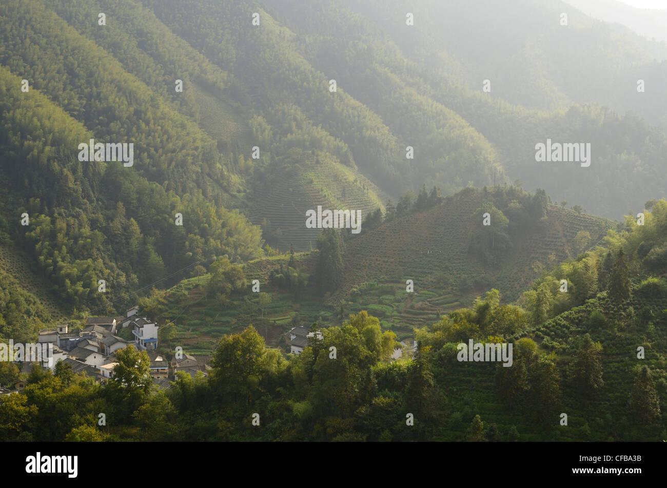 Villaggio di montagna di dongchong con la piantagione di tè nei pressi di feng le lago huangshan cina Immagini Stock