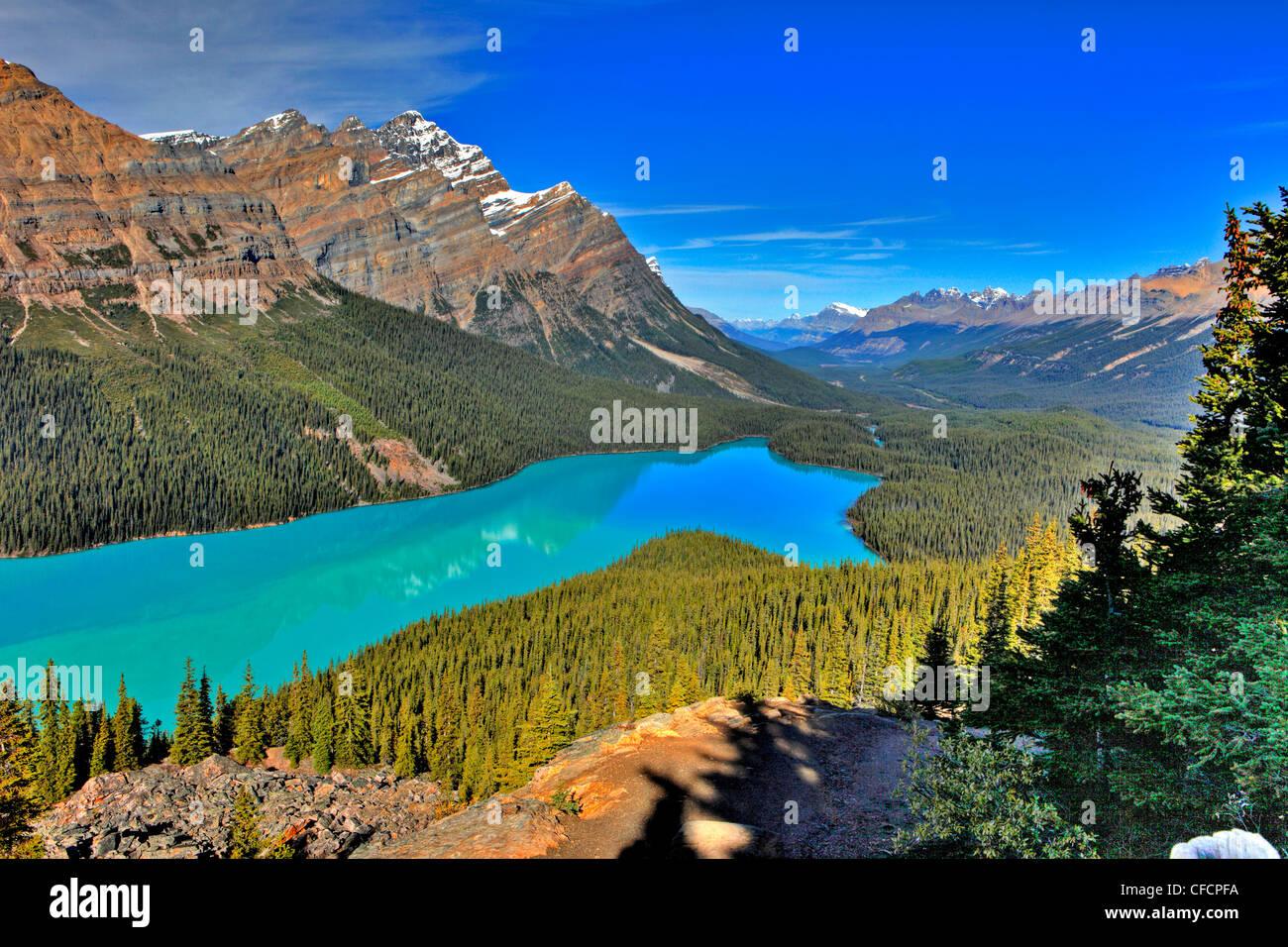 Peyto Lake, il Parco Nazionale di Banff, Alberta, Canada Immagini Stock