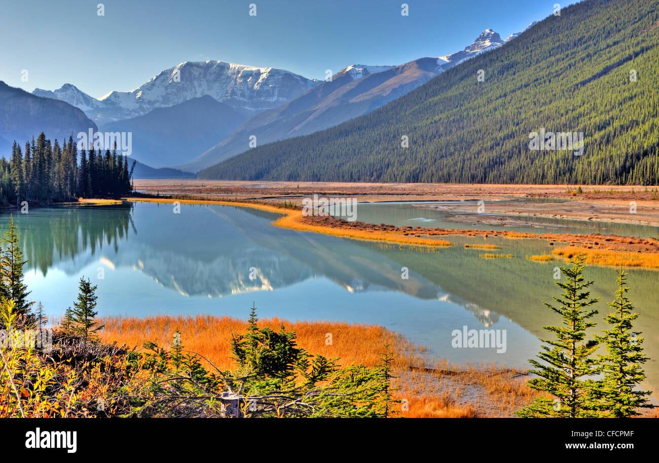 Sunwapta Fiume, Parco Nazionale di Jasper, Alberta, Canada Immagini Stock