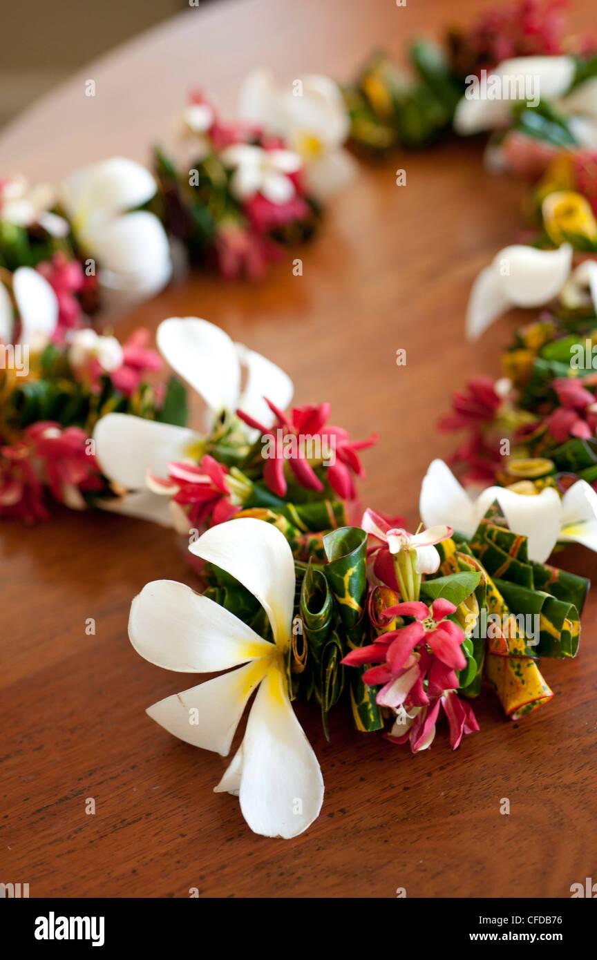 Lo Sheraton Fiji Resort, l'Isola di Denarau, Figi, Melanesia, Oceania e Isole del Pacifico e del Pacifico Immagini Stock