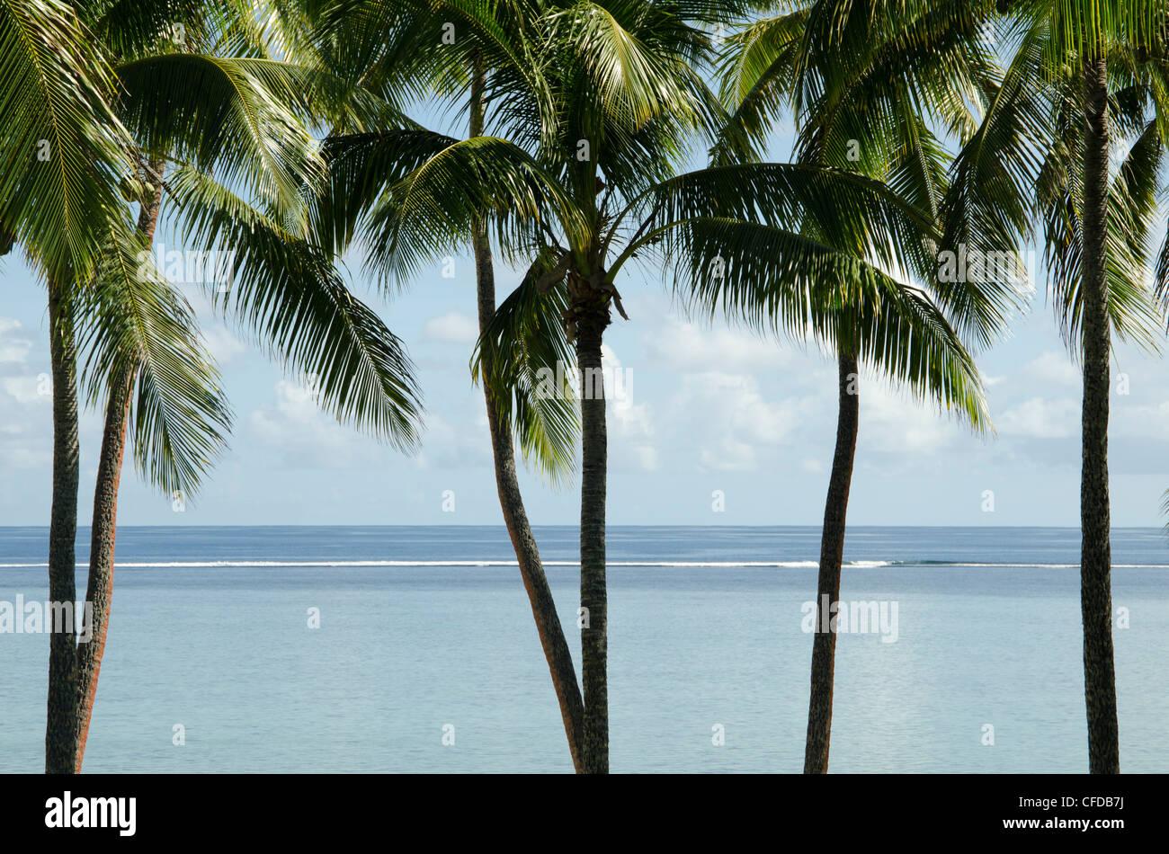Viti Levu, Figi, Melanesia, Oceania e Isole del Pacifico e del Pacifico Immagini Stock