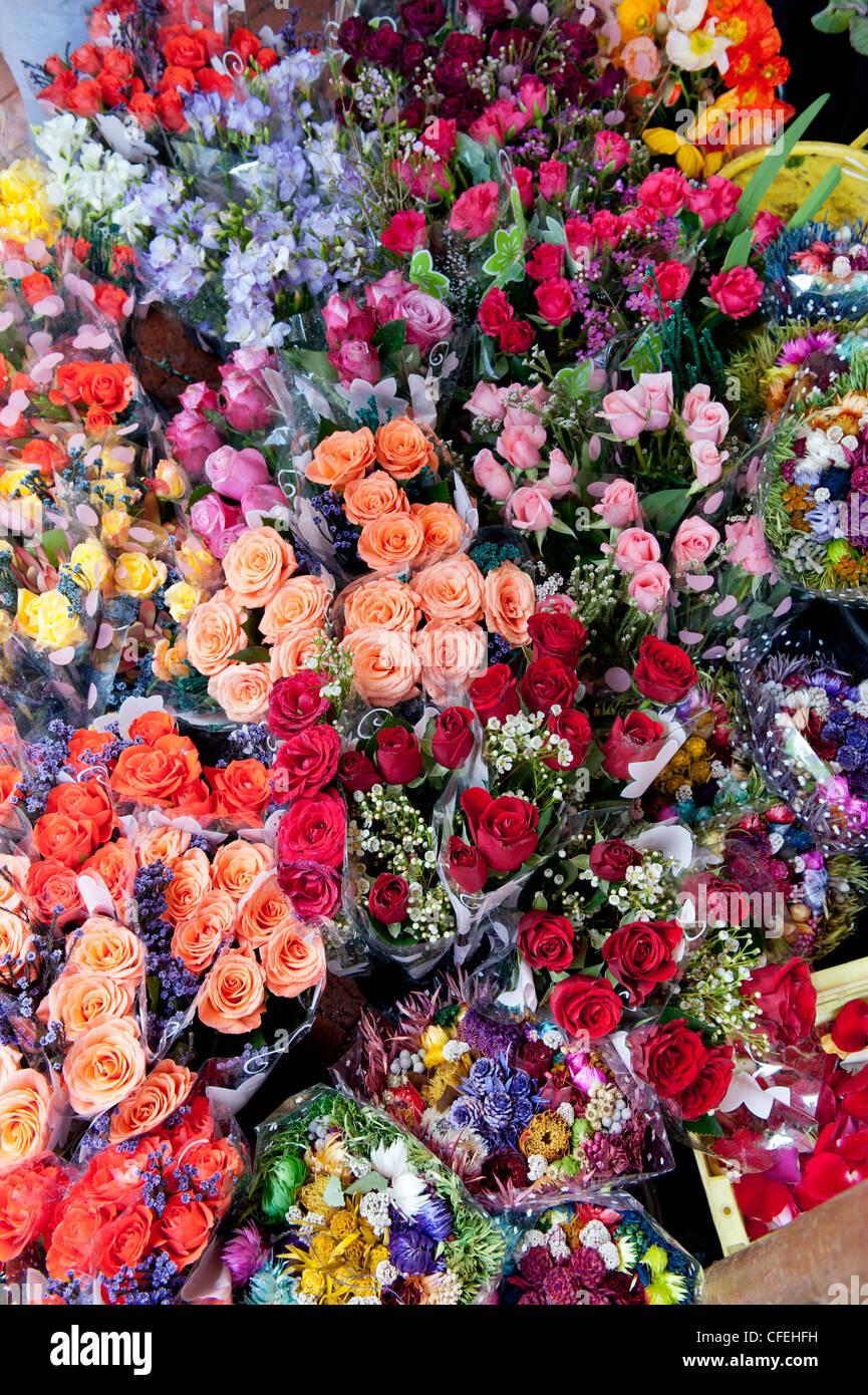Le Rose in Città del Capo Trafalgar luogo Adderley Street il mercato dei fiori, Città del Capo Sud Africa Foto Stock