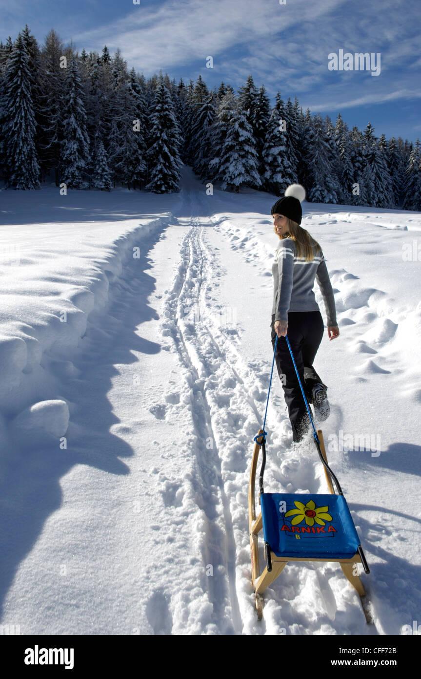 Giovane donna con lo slittino nel paesaggio innevato, Alto Adige, Alto Adige, Italia, Europa Immagini Stock