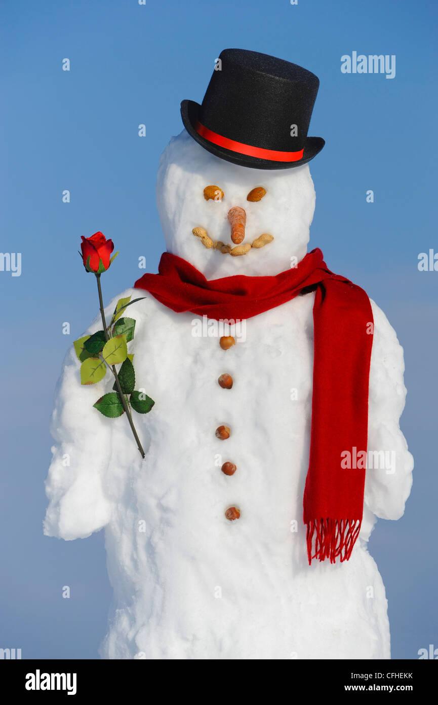 Pupazzo di neve con cappello e rose Foto   Immagine Stock  44025287 ... bec68998bde3