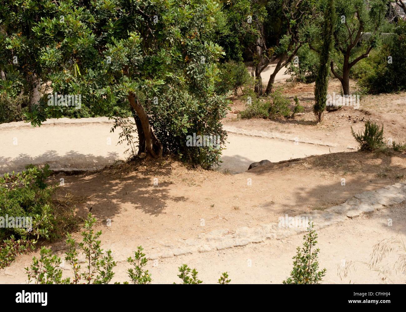 I percorsi nei giardini terrazzati del Parco Guell, Barcellona Foto ...