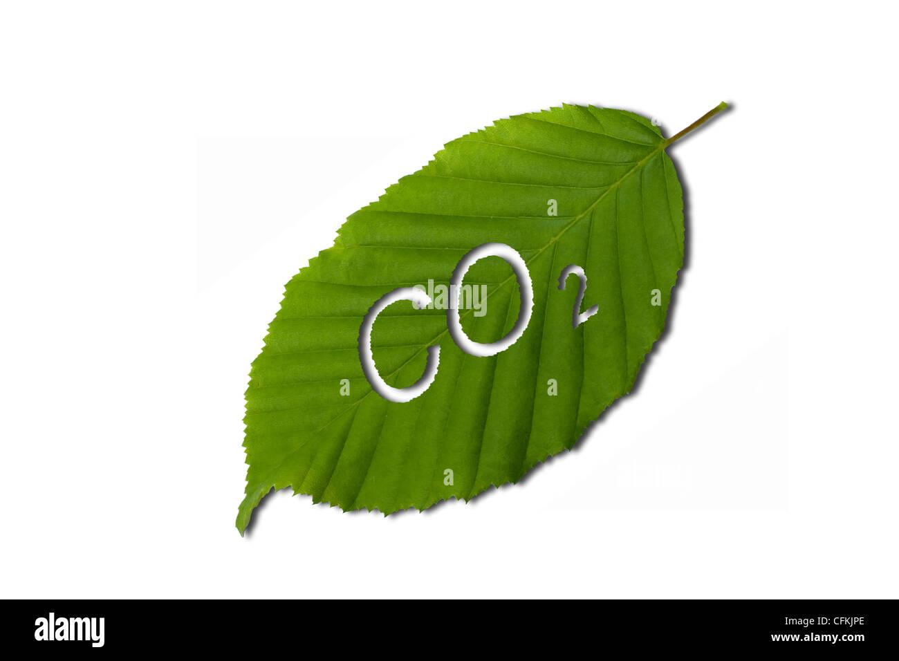 Biossido di carbonio Immagini Stock