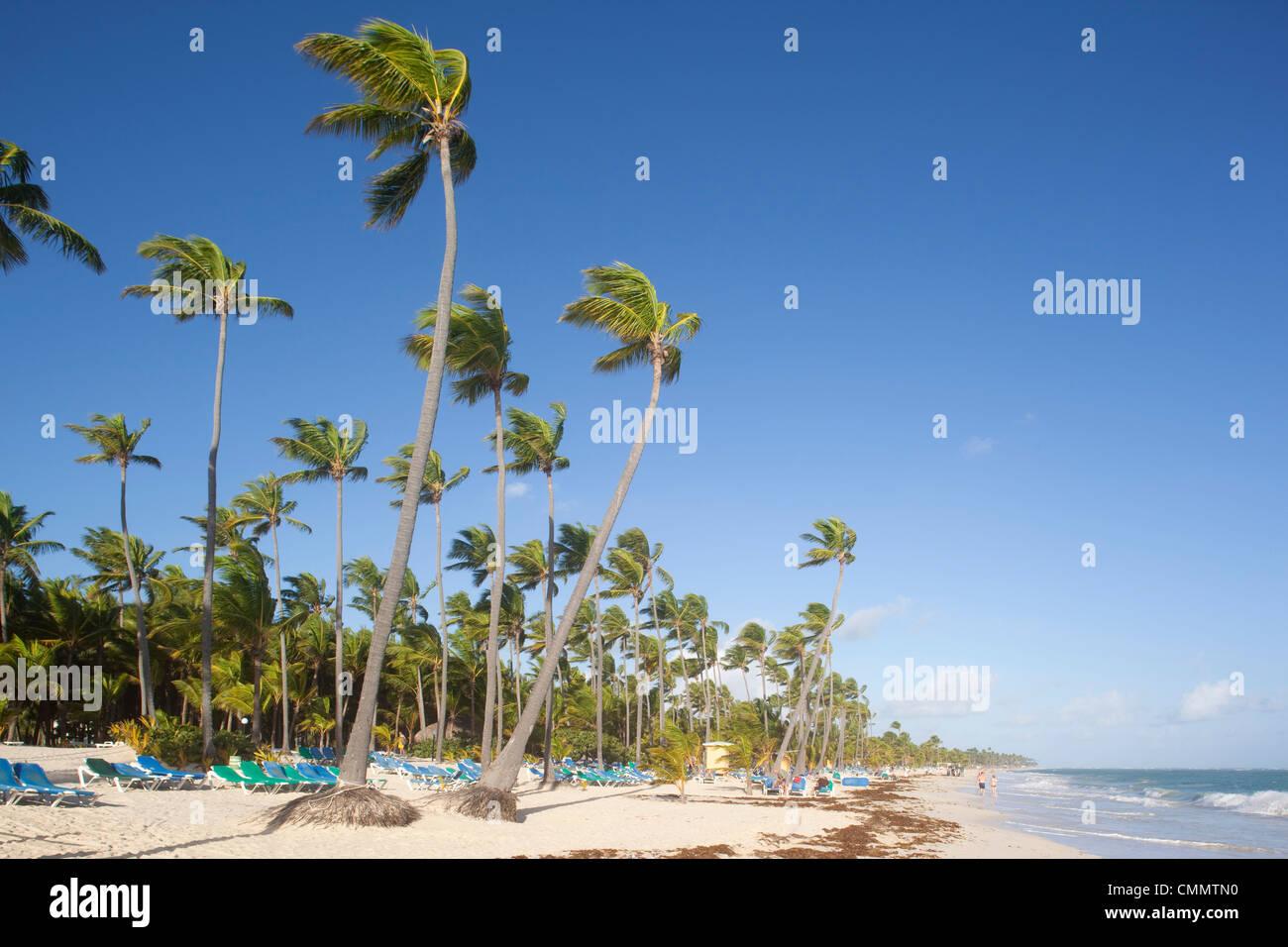 Bavaro Beach, Punta Cana, Repubblica Dominicana, West Indies, dei Caraibi e America centrale Immagini Stock