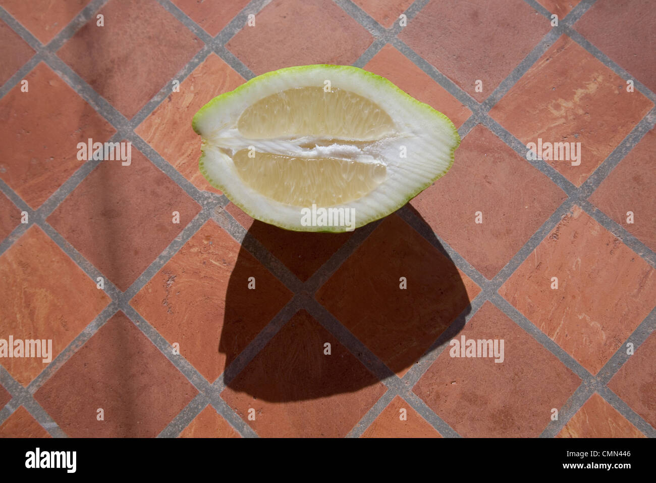 Piastrelle di agrumi immagini piastrelle di agrumi fotos stock