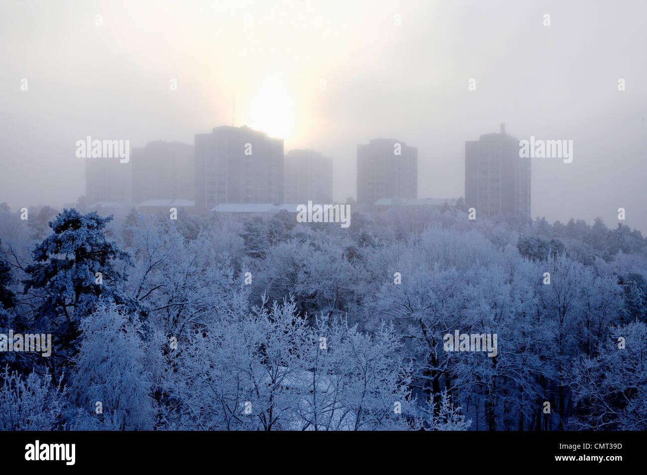 Alberi coperti di neve contro edifici Immagini Stock