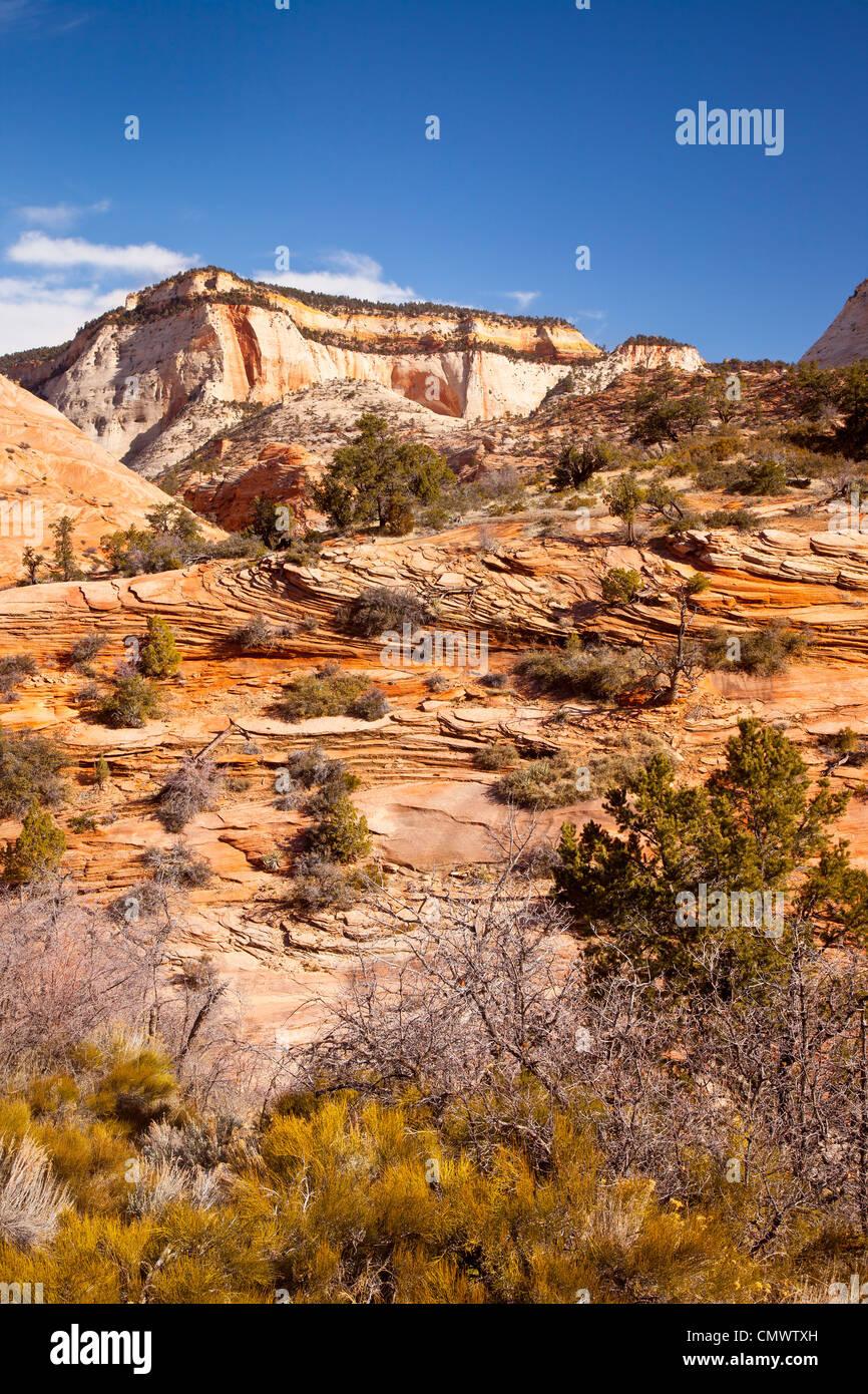 Le formazioni rocciose, Zion National Park nello Utah Stati Uniti d'America Immagini Stock