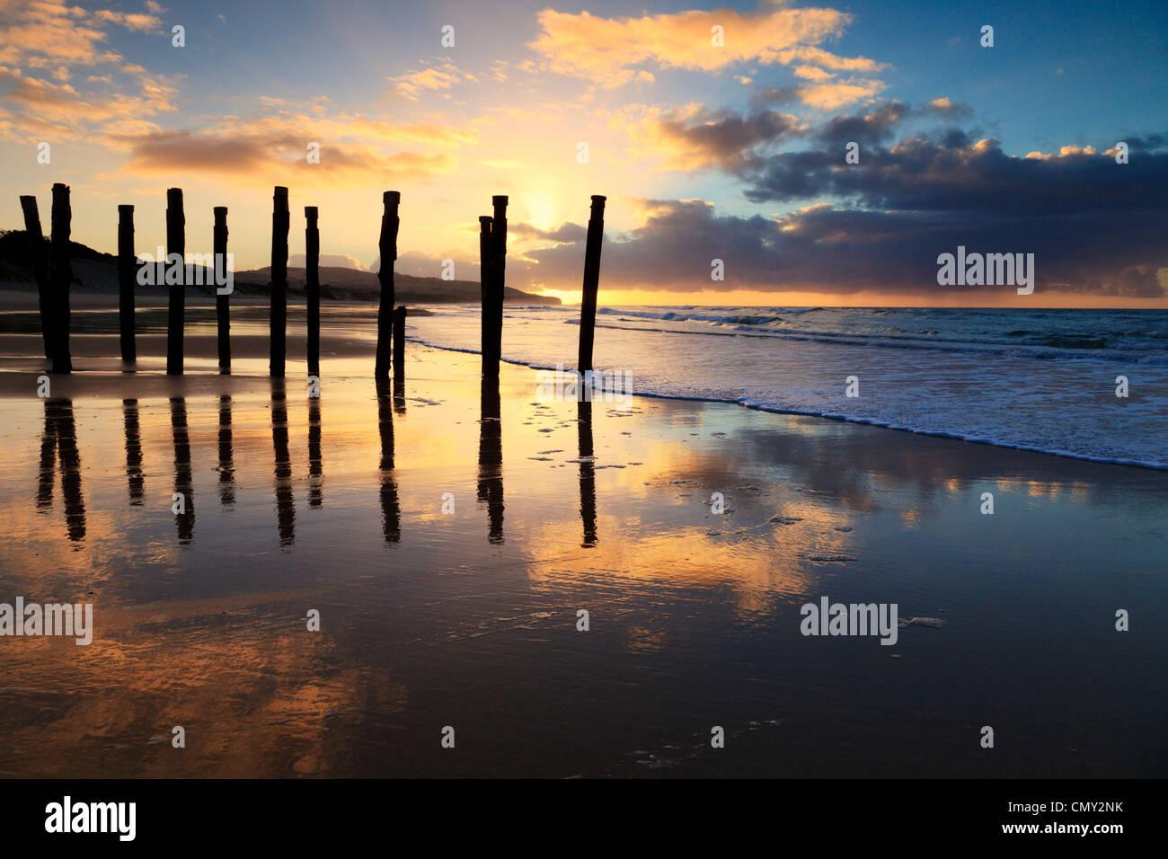 Sunrise a St Clair Beach, Dunedin, Otago, Nuova Zelanda. Immagini Stock