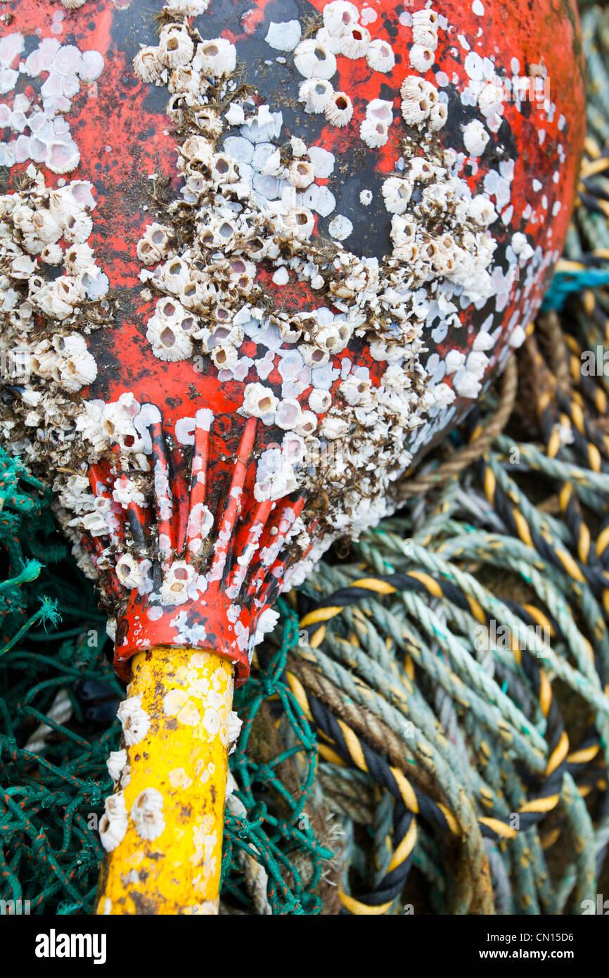 Attrezzi di pesca sul porto di Portnalong, Isola di Skye, Scotland, Regno Unito. Foto Stock