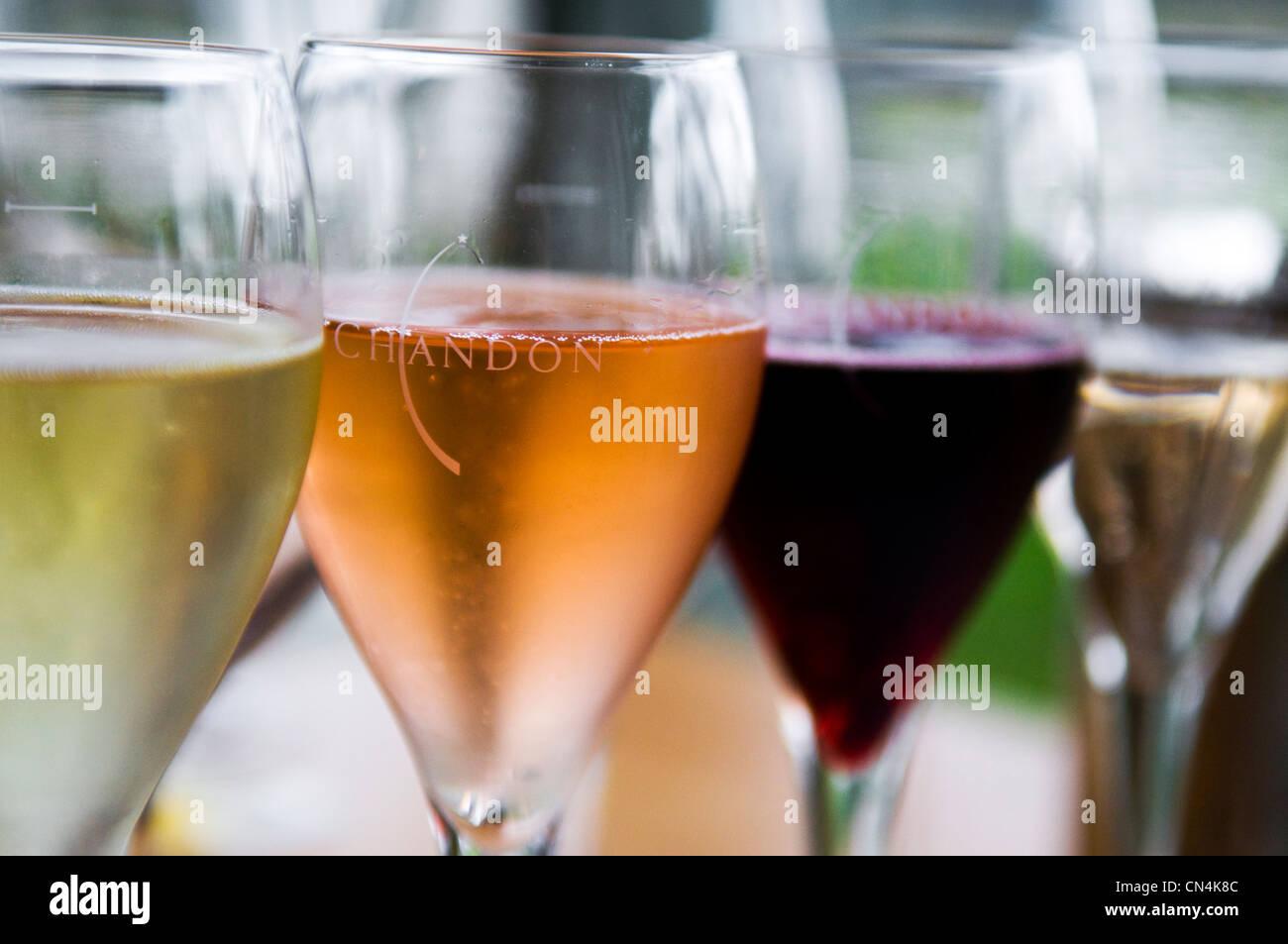 Australia, Victoria, regione vinicola della Valle di Yarra a nord est di Melbourne, Coldstream, degustazione vino Immagini Stock