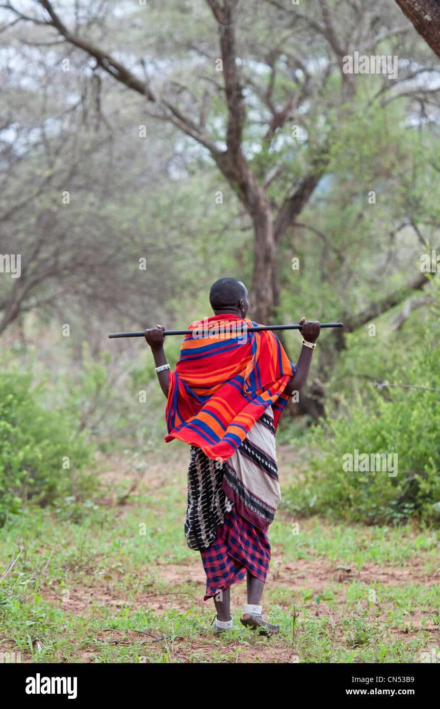 Tanzania, Regione di Arusha, paese Maasai, Longido Vulcano, escursioni con la guida Maasai Salonga Immagini Stock
