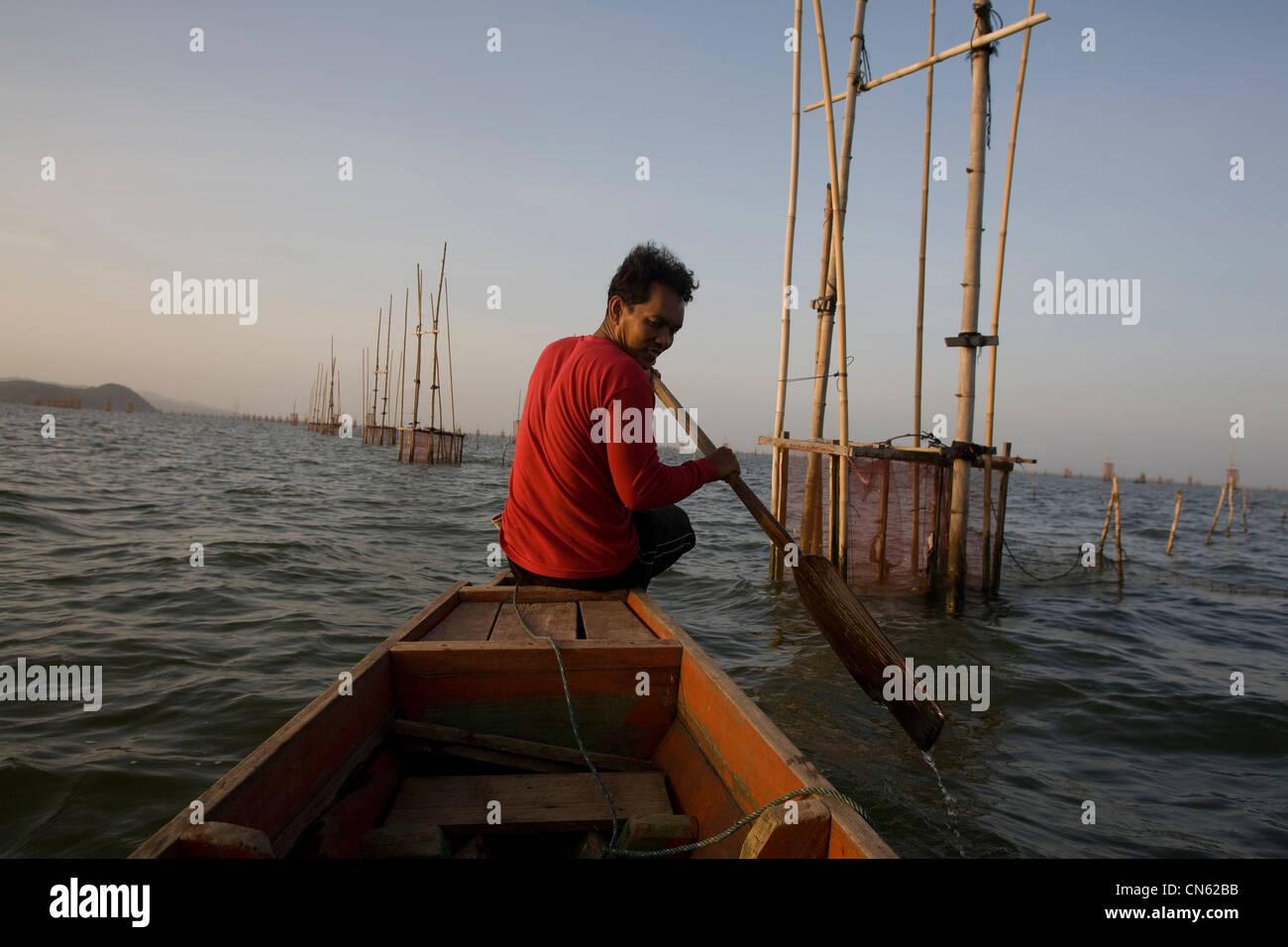 I pescatori all'alba di raccogliere le loro catture dalle reti e gabbie cadere sul letto di Songkhla Lago. Immagini Stock