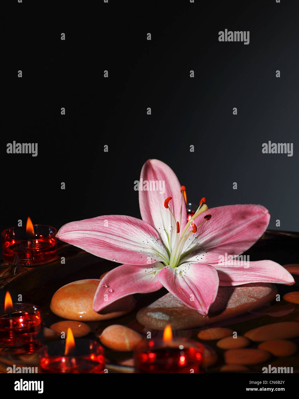 Il Colore Delle Candele.Atmosfera Zen A Spa Salone La Calda Luce Delle Candele In