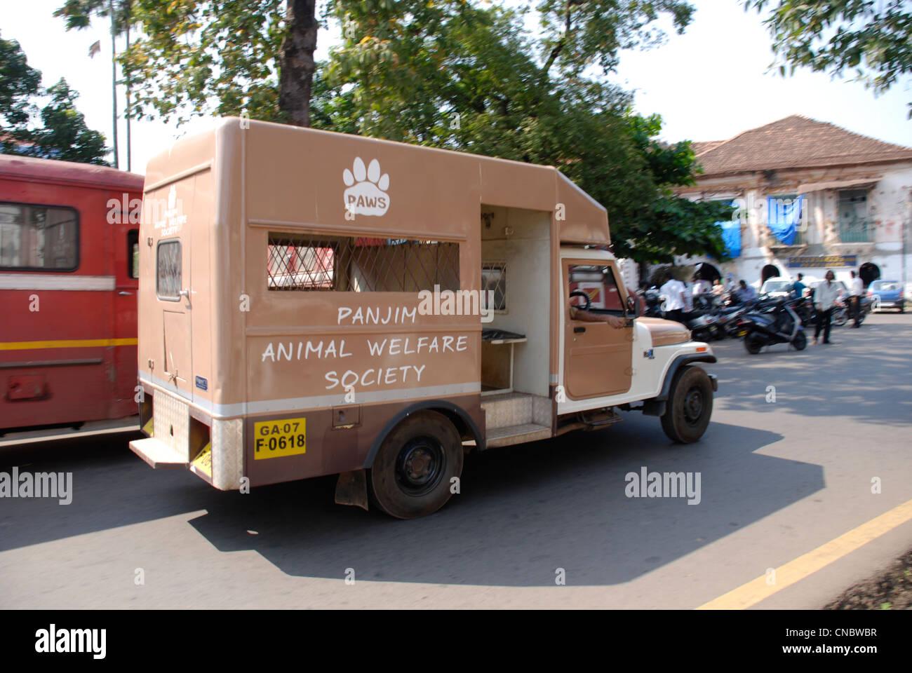Un veicolo di Panjim Animal Welfare Society (zampe) nel capitale di Goa di Panaji Immagini Stock