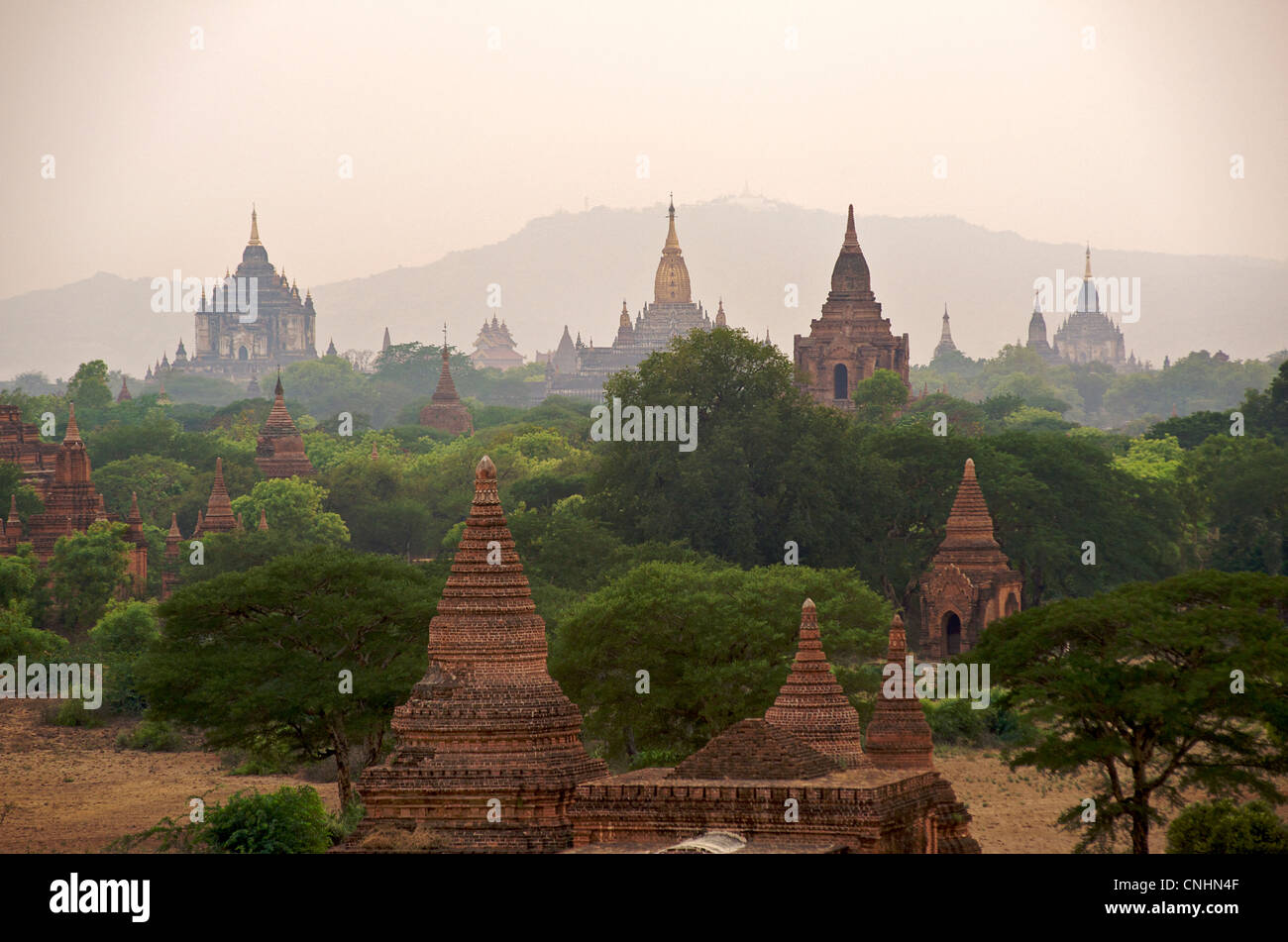 Vista su tutta la pianura di Bagan con la guglia dorata della pagoda di Ananda center. La Birmania. Antico stupa Immagini Stock