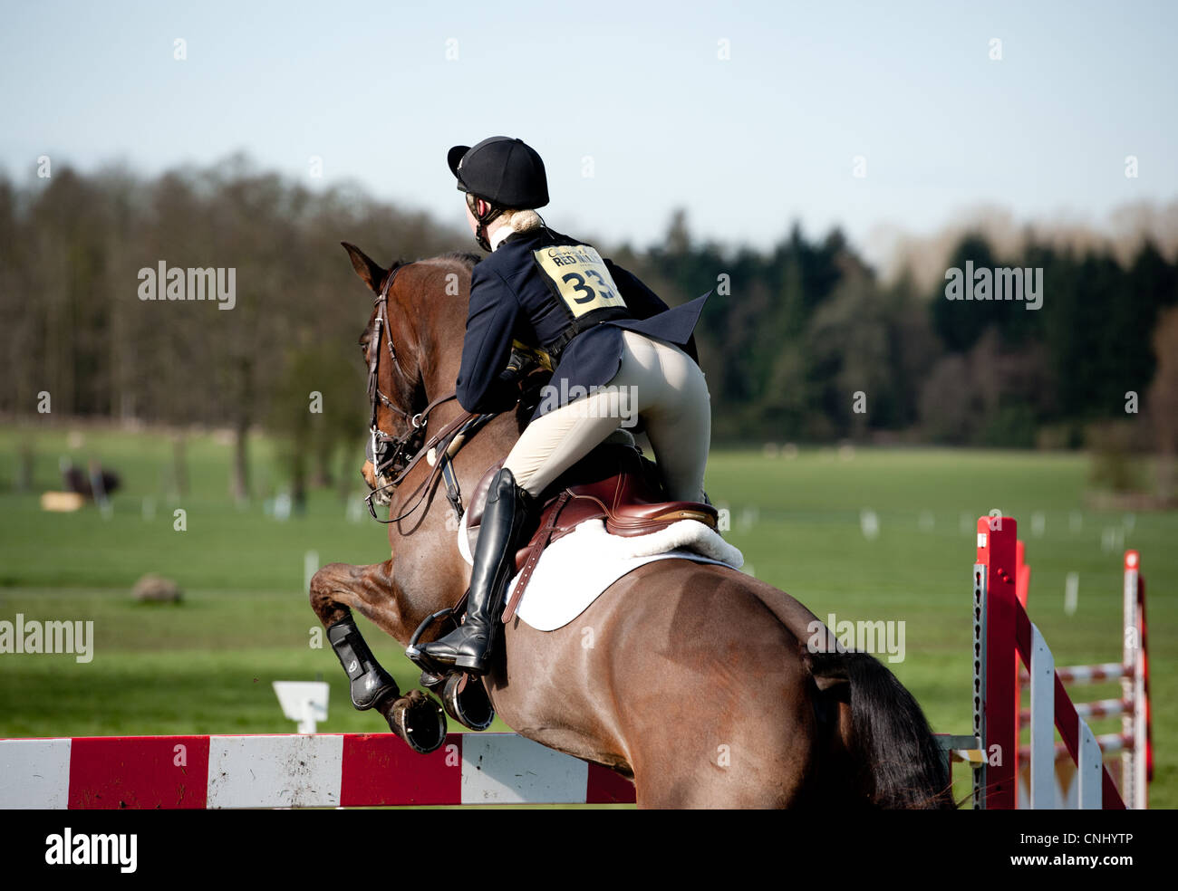 Horse Show Jumping Immagini Stock