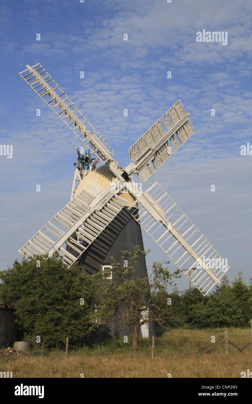 Xix secolo tower mill, Thelnetham Windmill Thelnetham, Little Ouse Valley, Suffolk, Inghilterra, giugno Immagini Stock