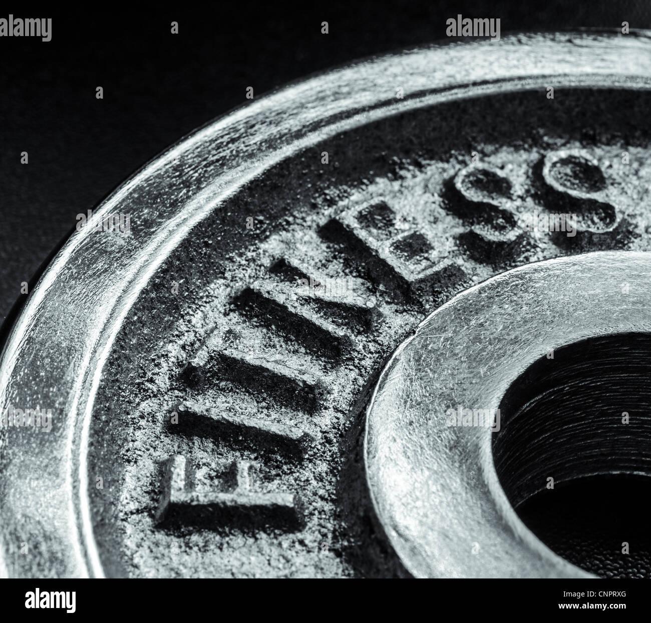 Testo di ferro della parola fitness Immagini Stock